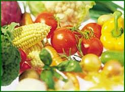 Wir ernähren uns vorwiegend Vegetarisch, was nicht ausschließt, das im Sommer auch mal eine Wurst auf dem Grill landet...